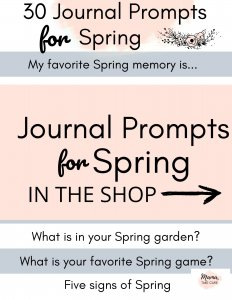 Journal Prompts for Spring
